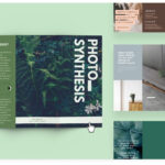 Free Online Brochure Maker: Design A Custom Brochure In Canva Inside One Sided Brochure Template