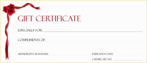 Free Printable Gift Certificate Template Pages Christmas for Free Christmas Gift Certificate Templates