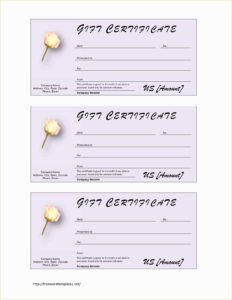 Free Printable Gift Certificates Canada Certificate Template for Salon Gift Certificate Template
