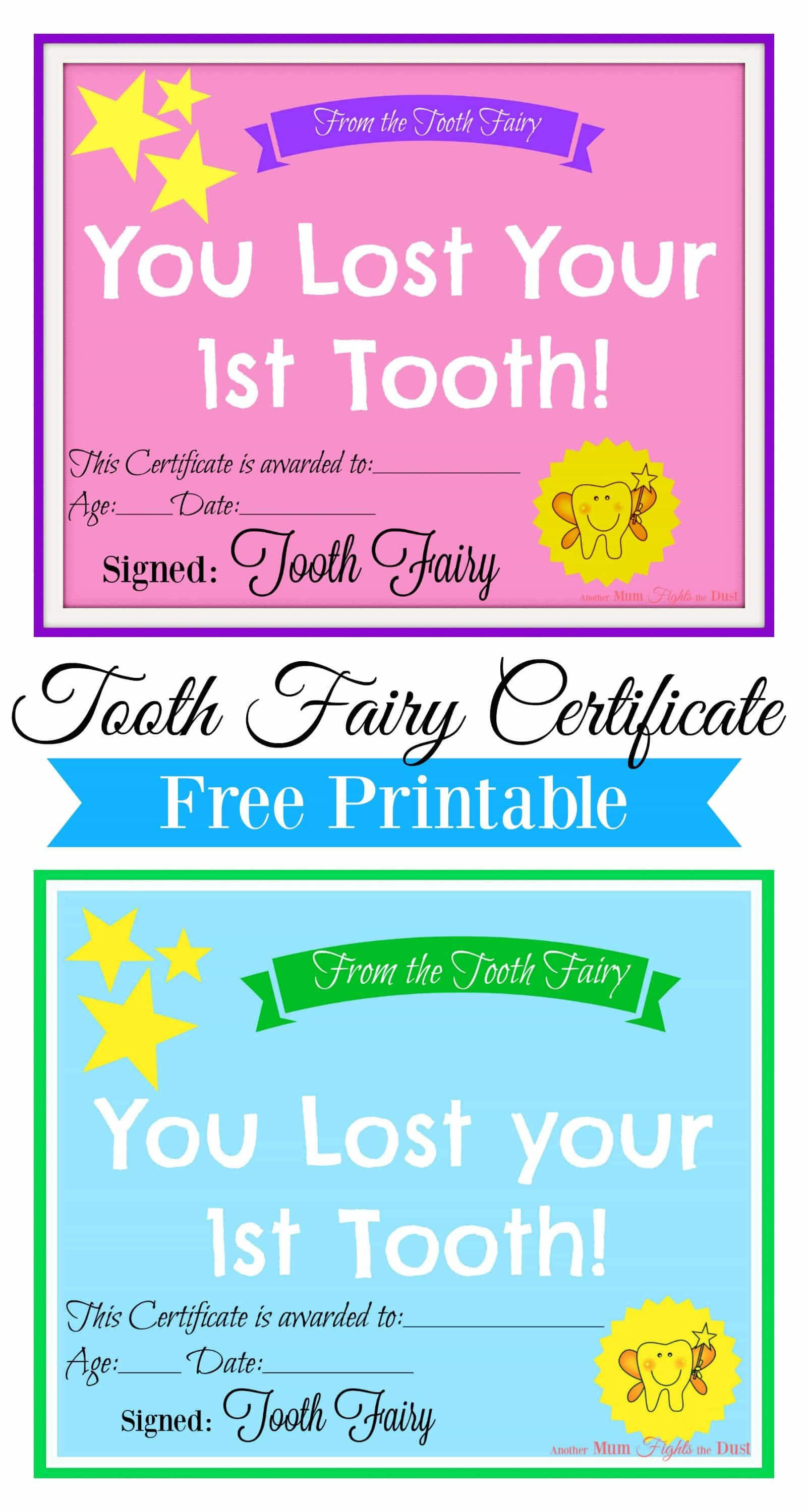 Free Printable Tooth Fairy Certificate | Tooth Fairy Ideas Intended For Tooth Fairy Certificate Template Free