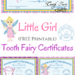 Free Printable Tooth Fairy Certificates | 1St Grade | Tooth Intended For Free Tooth Fairy Certificate Template
