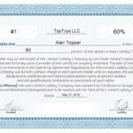 Free Stock Certificate Online Generator In Blank Share Certificate Template Free