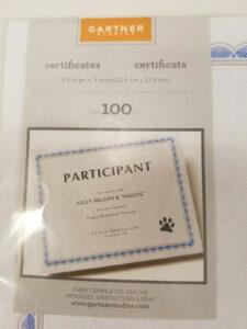 Gartner Studios Certificate 100 Count Blue Gray Border 8.5 X 11 Template for Gartner Certificate Templates