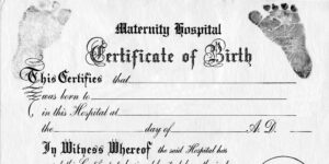 Great For Teddy Bear And Baby Doll Birth Certificates Free in Baby Doll Birth Certificate Template