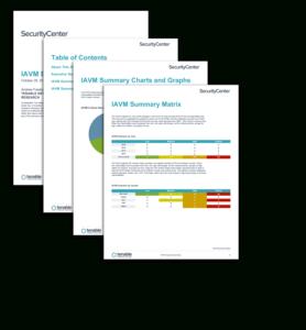 Iavm Executive Summary Report – Sc Report Template | Tenable® within Executive Summary Report Template