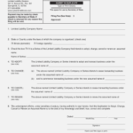Illinois Annual Report Form Llc Accurate But Llc 14 within Llc Annual Report Template