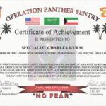 Military Certificate Of Appreciation Template – Top Image Intended For Army Certificate Of Appreciation Template