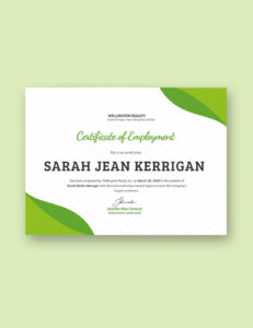Modern Certificate Of Participation Templates | Certificate Pertaining To Certificate Of Participation Template Pdf
