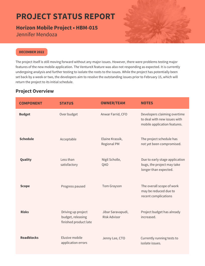 Monthly Project Status Report Template – Venngage Within Monthly Project Progress Report Template
