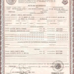 Pinrandy S On Docs In 2019 | Birth Certificate Template for Novelty Birth Certificate Template