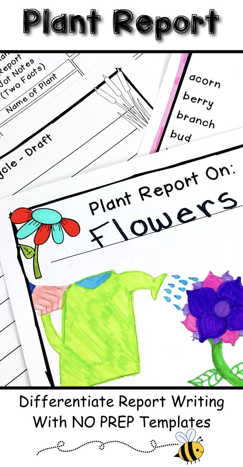 Plant Research Project – Report Writing Templates Pertaining To Research Project Report Template