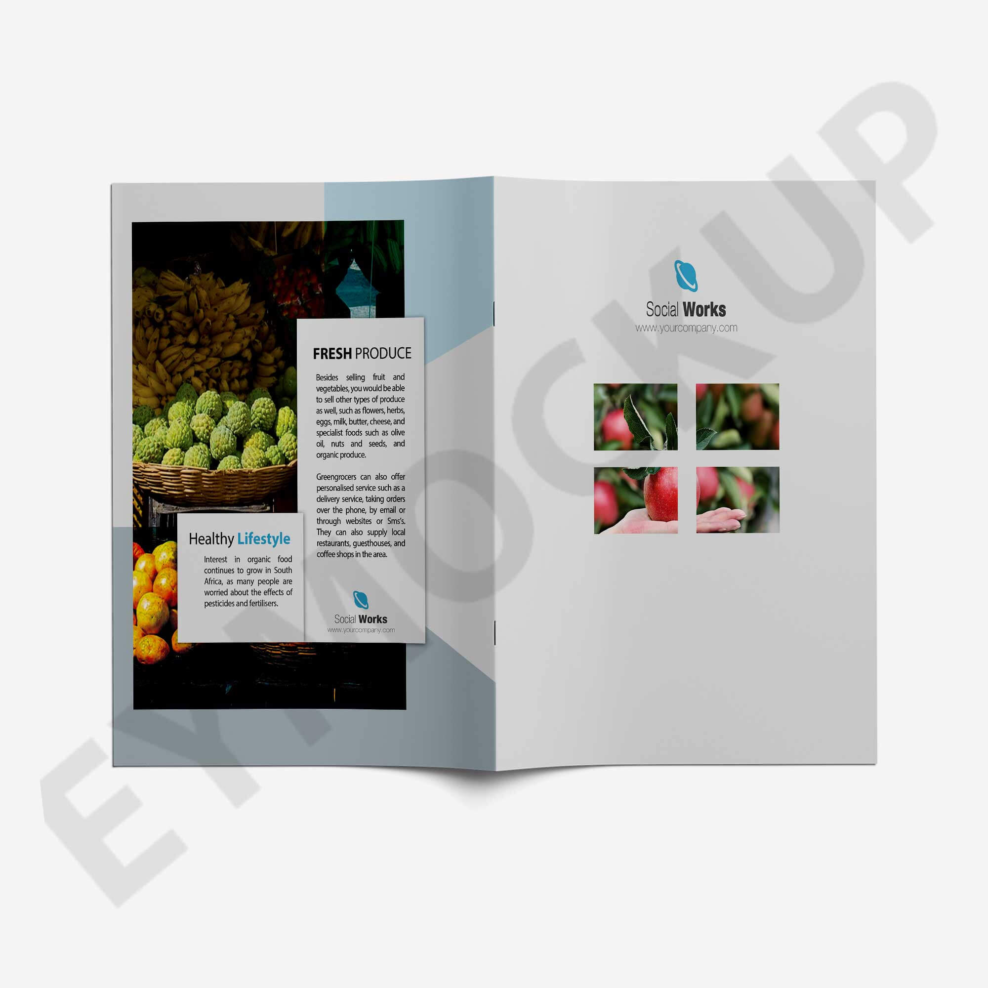 Premium Wine Brochure Template | Eymockup Inside Wine Brochure Template