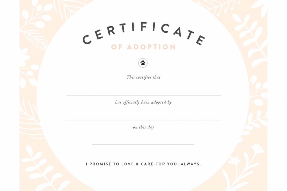 Pretty Fluffy Inside Blank Adoption Certificate Template