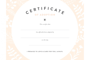 Pretty Fluffy intended for Child Adoption Certificate Template