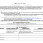 Program Assessment Report Template in Data Quality Assessment Report Template