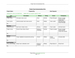 Project Management Overview Template Plan Doc Executive intended for Implementation Report Template