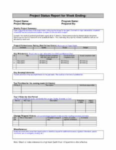 Project Management. Project Management Report Template within Weekly Progress Report Template Project Management