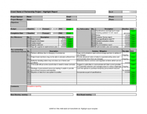 Project Management Report Late Excel Monthly Reports Lates within Baseline Report Template