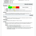 Project Management Report Template Free Dougmohns Status Pertaining To Technical Support Report Template