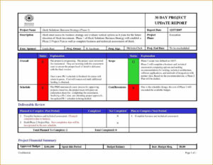 Project Management Report Template Status Ideas Team Excel for It Management Report Template