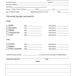 Proof Vaccination Dog - Fill Online, Printable, Fillable pertaining to Dog Vaccination Certificate Template