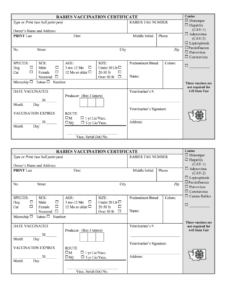 Rabies Vaccine Templates – Fill Online, Printable, Fillable with Dog Vaccination Certificate Template