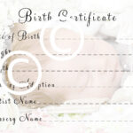 Reborn Baby Doll Birth Certificate Instant Download To Print Free Ship Inside Baby Doll Birth Certificate Template