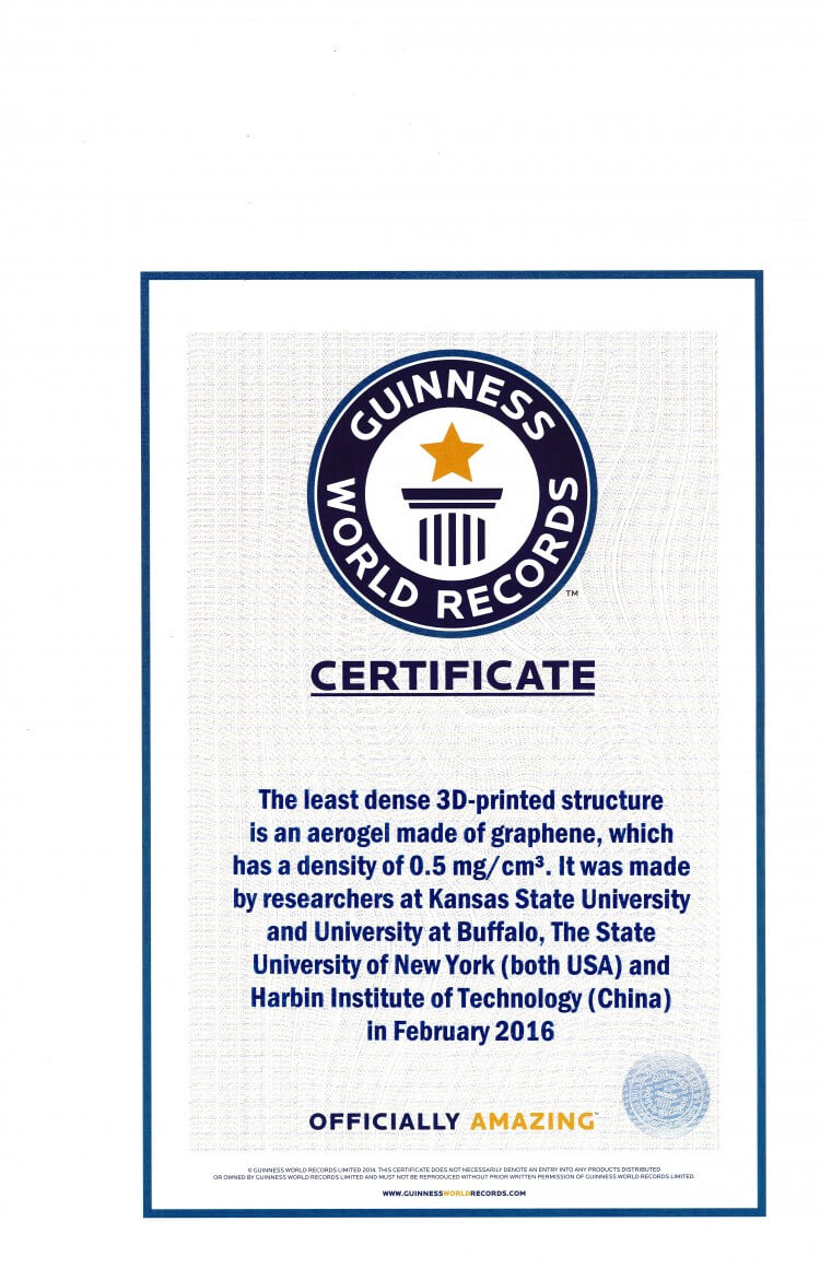 Record Holder Guinness World Records ™ Names Engineers Within Guinness World Record Certificate Template