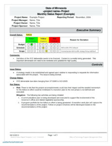 Report Summary Plate Project Management Audit Executive within Test Summary Report Excel Template