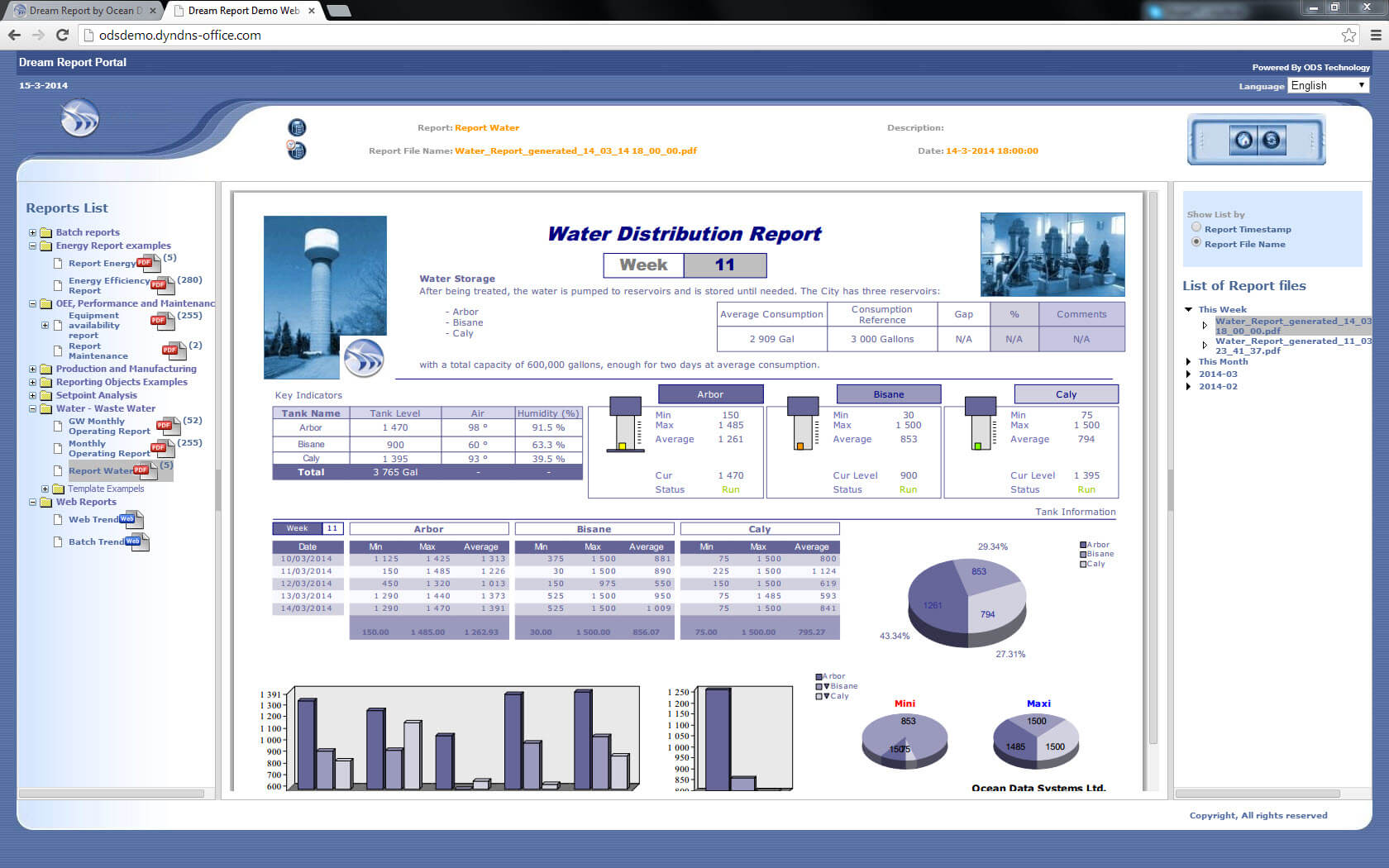 Report Templates And Sample Report Gallery – Dream Report Within Reporting Website Templates