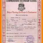 School Leaving Certificate Format.school Leaving Certificate For School Leaving Certificate Template