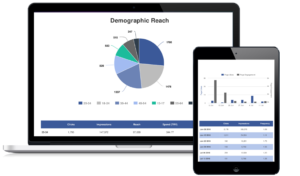 Sem Report Template For Ad Agencies | Reportgarden throughout Trial Report Template