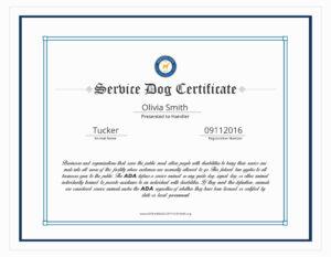 Service Dog Certificate Template 14 Clarifications On with Service Dog Certificate Template