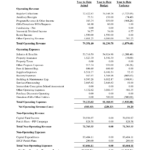 Small Business Financial Analysis Spreadsheet Sample Reports With Quarterly Report Template Small Business