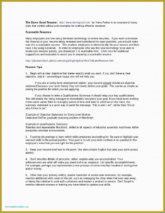 Soc Report Example Sae Pdf Type Excel Template 1 2 Ssae 16 intended for Ssae 16 Report Template