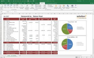 Solution 7 Excel Financial Reporting & Planning For Netsuite regarding Financial Reporting Templates In Excel