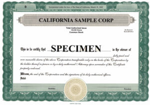 Stock Certificate Template Word | Certificatetemplateword for Stock Certificate Template Word