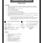 Summary Report Template For Work Summary Report Template