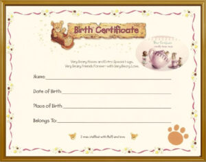 Teddy Bear Birth Certificate | Teddy Bear Tea | Teddy Bear intended for Build A Bear Birth Certificate Template