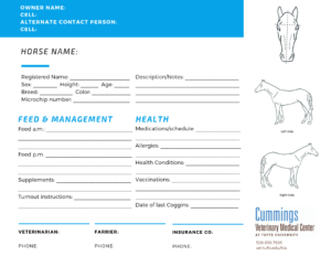 Travel Confidently | News At Cummings School Of Veterinary throughout Horse Stall Card Template