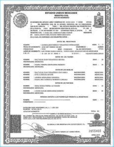 Uscis Birth Certificate Translation Template #10036 for Uscis Birth Certificate Translation Template