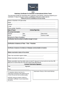 Veterinary Certificate – Fill Online, Printable, Fillable regarding Veterinary Health Certificate Template