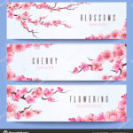 Wedding Banners Template With Spring Japan Sakura, Cherry For Wedding Banner Design Templates
