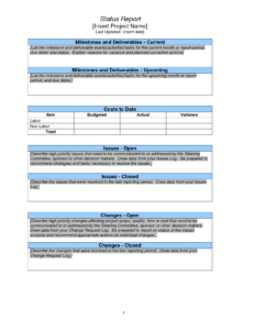 Weekly Project Status Report Sample – Google Search for One Page Project Status Report Template