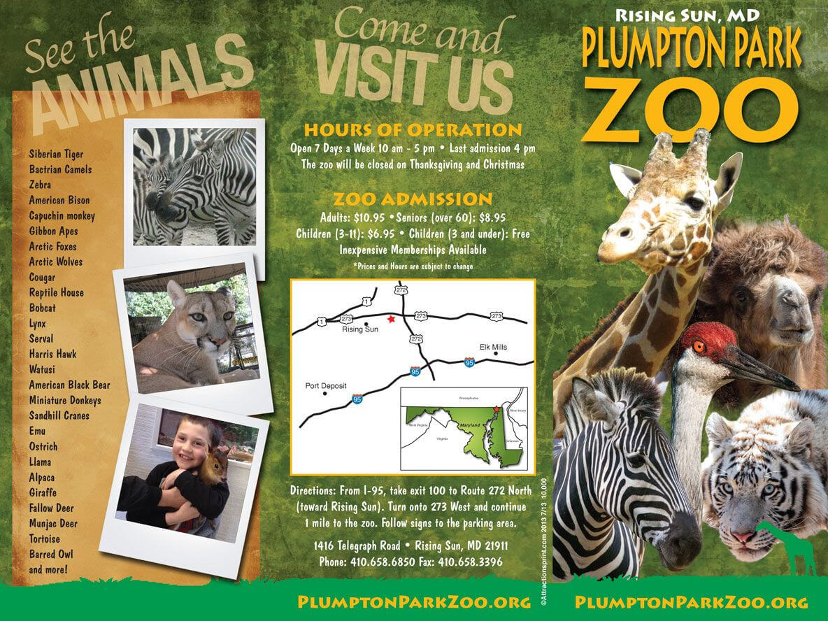 Zoo Brochure - Google Search | The Las Vegas Zoo | Zoo For Zoo Brochure Template