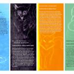 Zoo Brochure Template