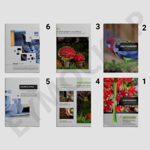 Zoo Photography Brochure Template   Eymockup throughout Zoo Brochure Template
